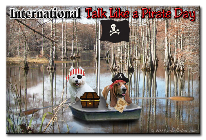International Pirate Day with two dogs dressed like pirates on a raft