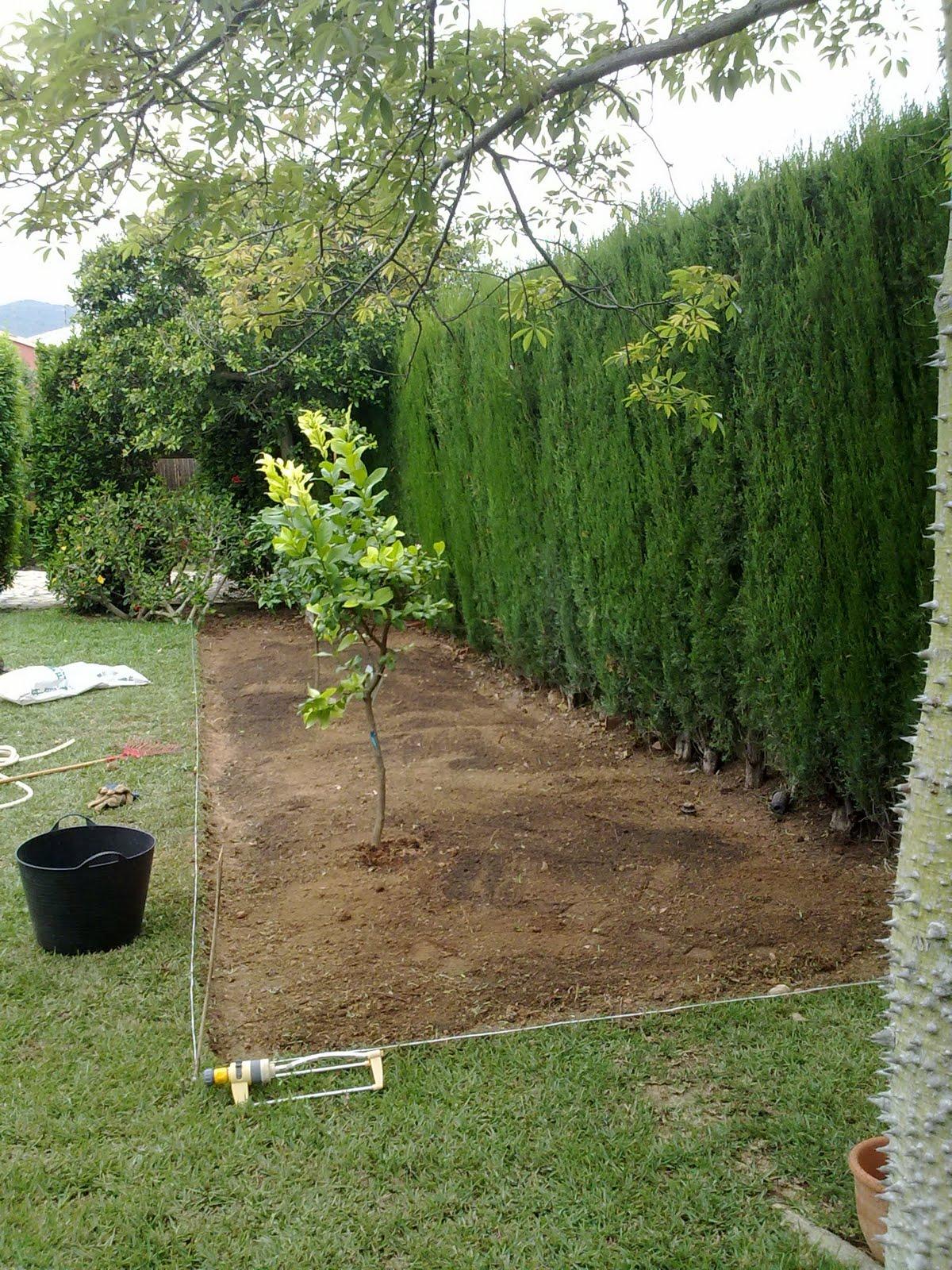 Formajardin crear un peque o huerto en el jard n for Hacer un huerto en el jardin