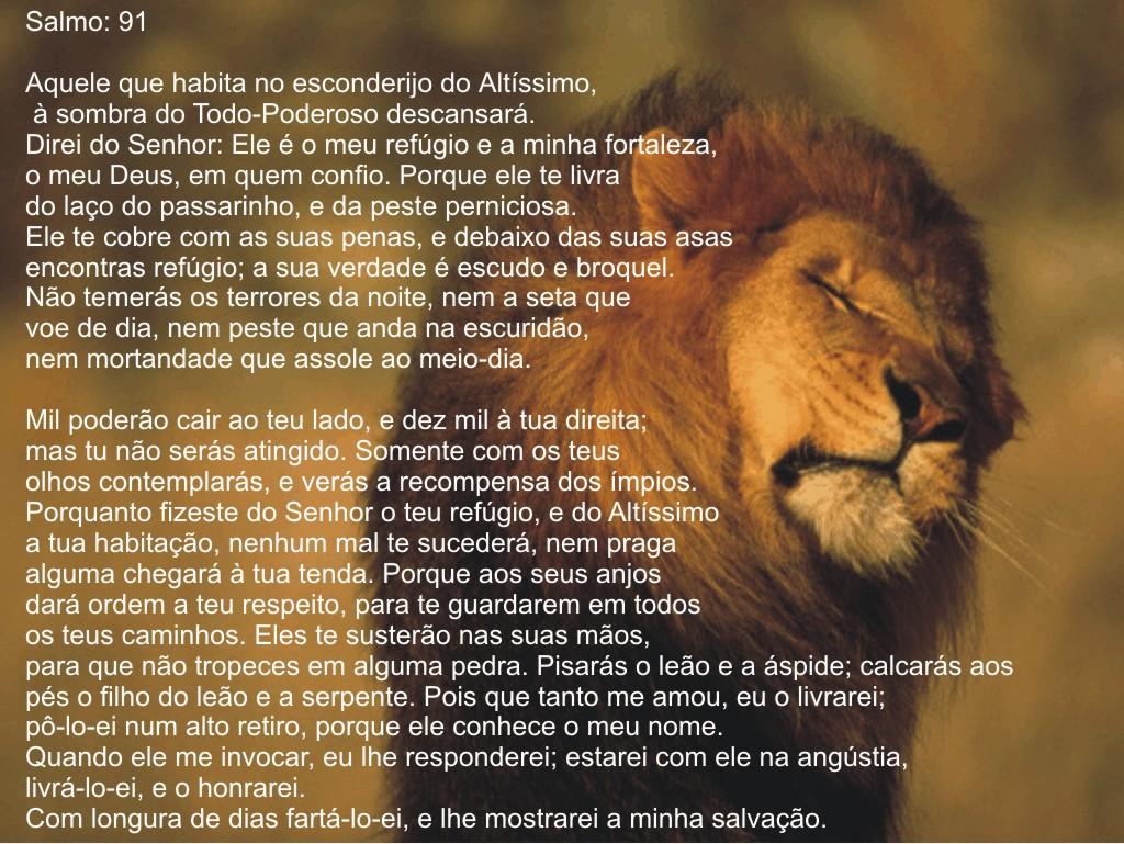 Viernes – Salmos 91: 2 NTV « Letreros Cristianos.com