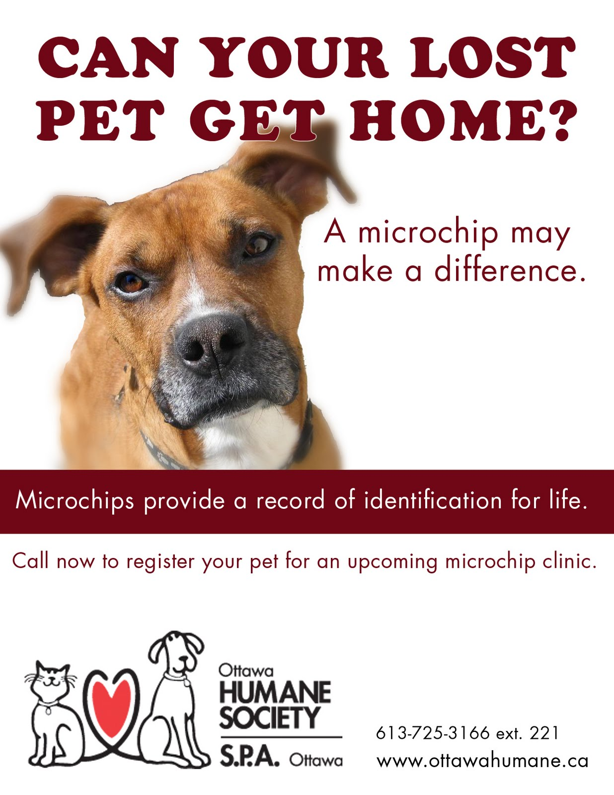 ottawa humane society microchip clinic this sunday