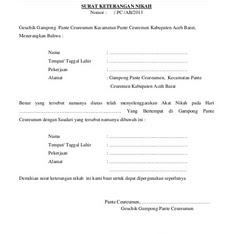 Contoh Surat Nikah Sirih Pola Surat Pernyataan Nikah