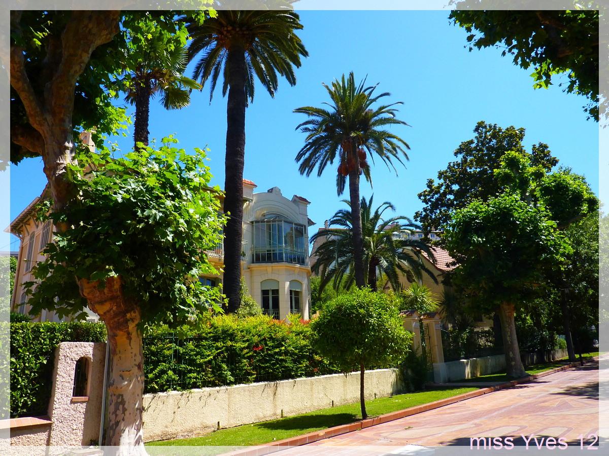 Photograff jardin tivoli for Jardines tivoli zona 9
