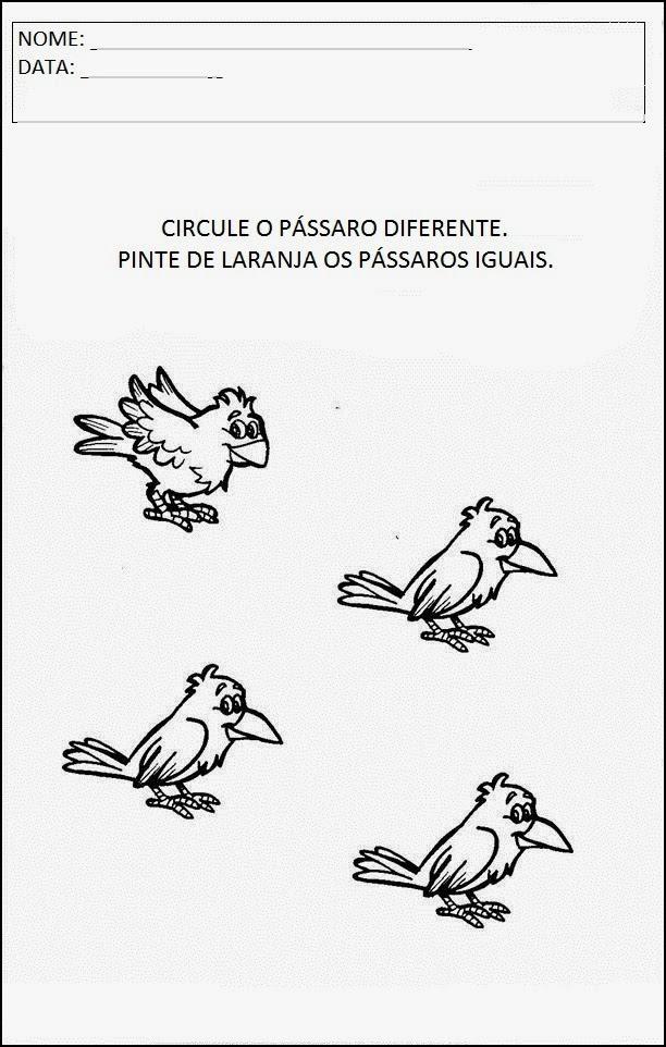 Atividades sobre animais - Circule o pássaro