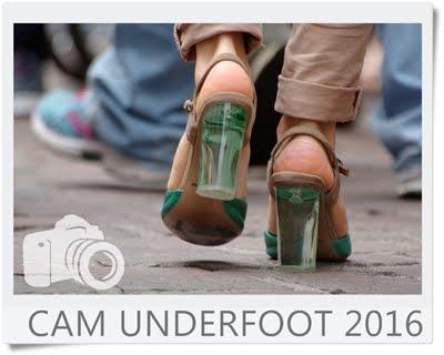 Cam Underfoot 2016