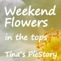 "2. Platz bei ""weekend flowers # 35"