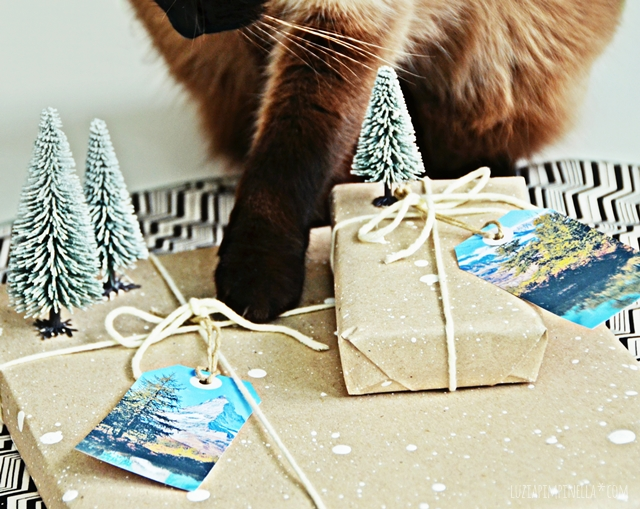 luzia pimpinella | DIY | weihnachtsgeschenke-verpackungen für männer