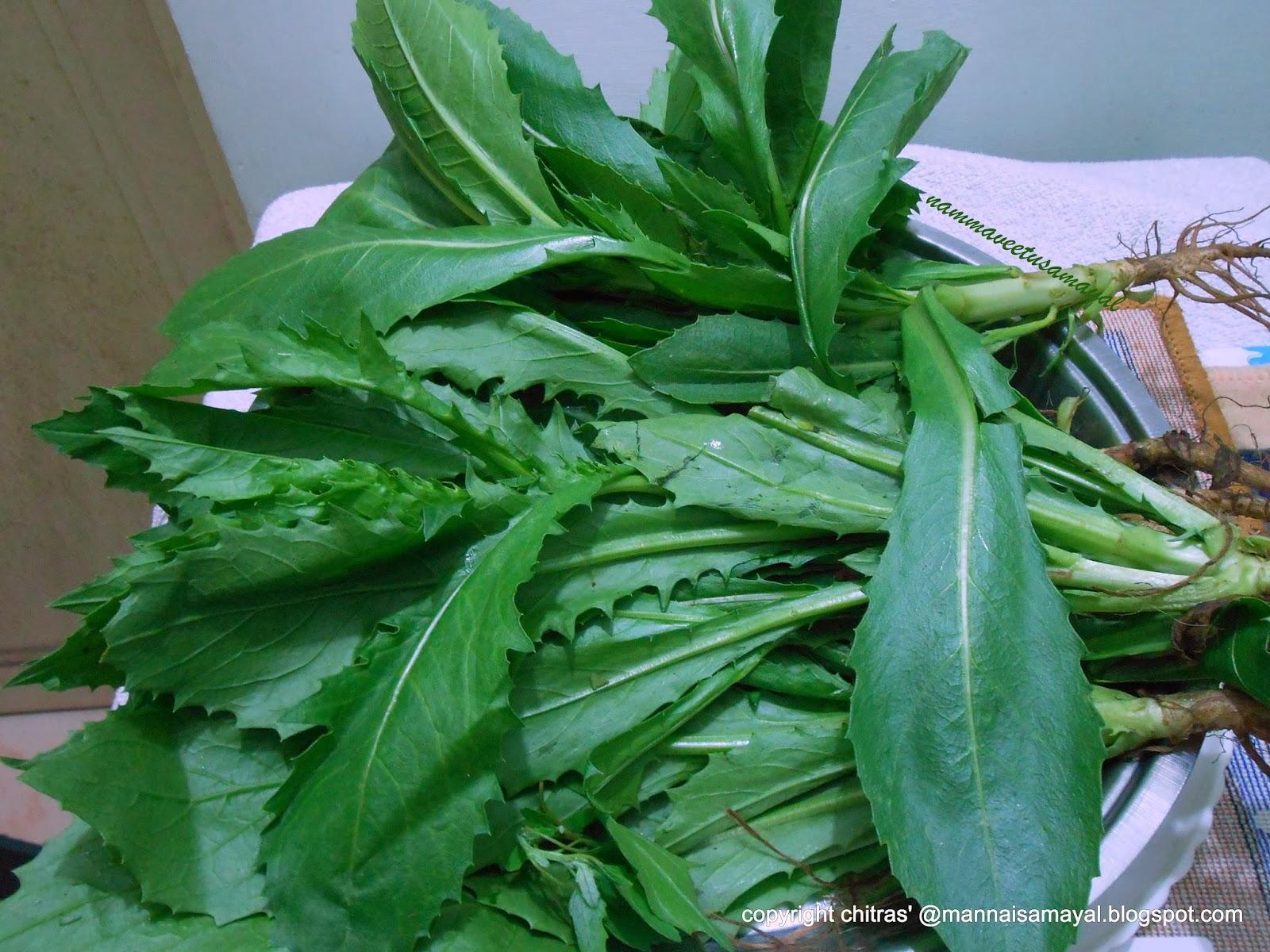 Chattissgarh famous Greens : Kusum Bhaji