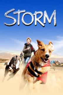 Meu amigo Storm