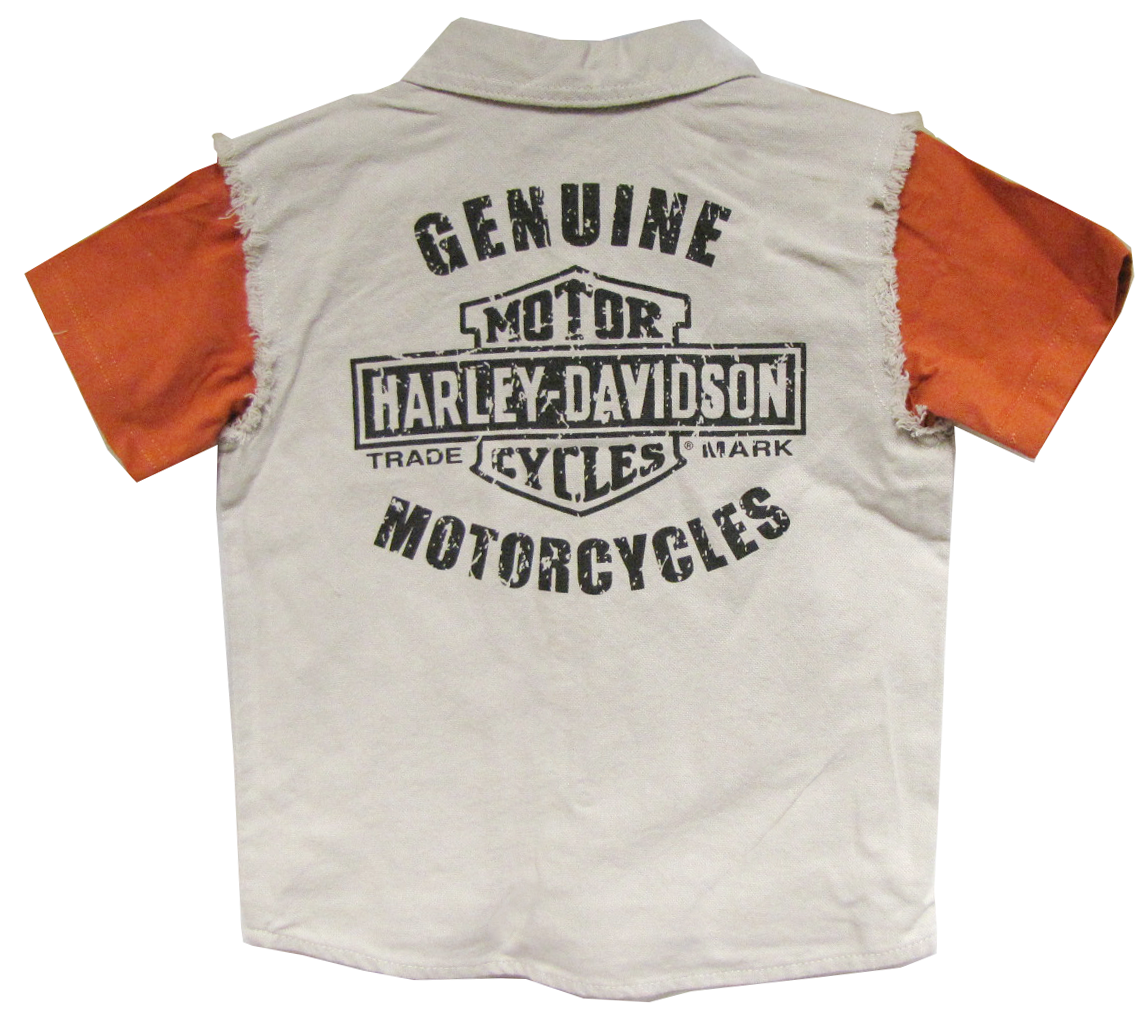 http://www.adventureharley.com/harley-davidson-toddler-boys-blow-out-shirt