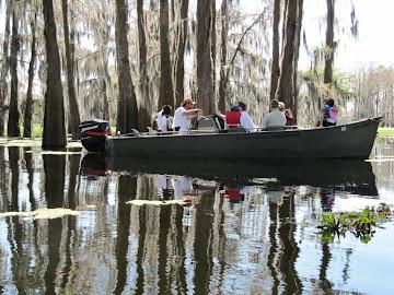 Les bayous de l'Atchafalaya – 19 mars