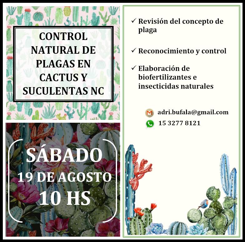 SÁBADO 19 DE AGOSTO 10 HS CONTROL NATURAL DE PLAGAS EN CACTUS Y SUCULENTAS NC