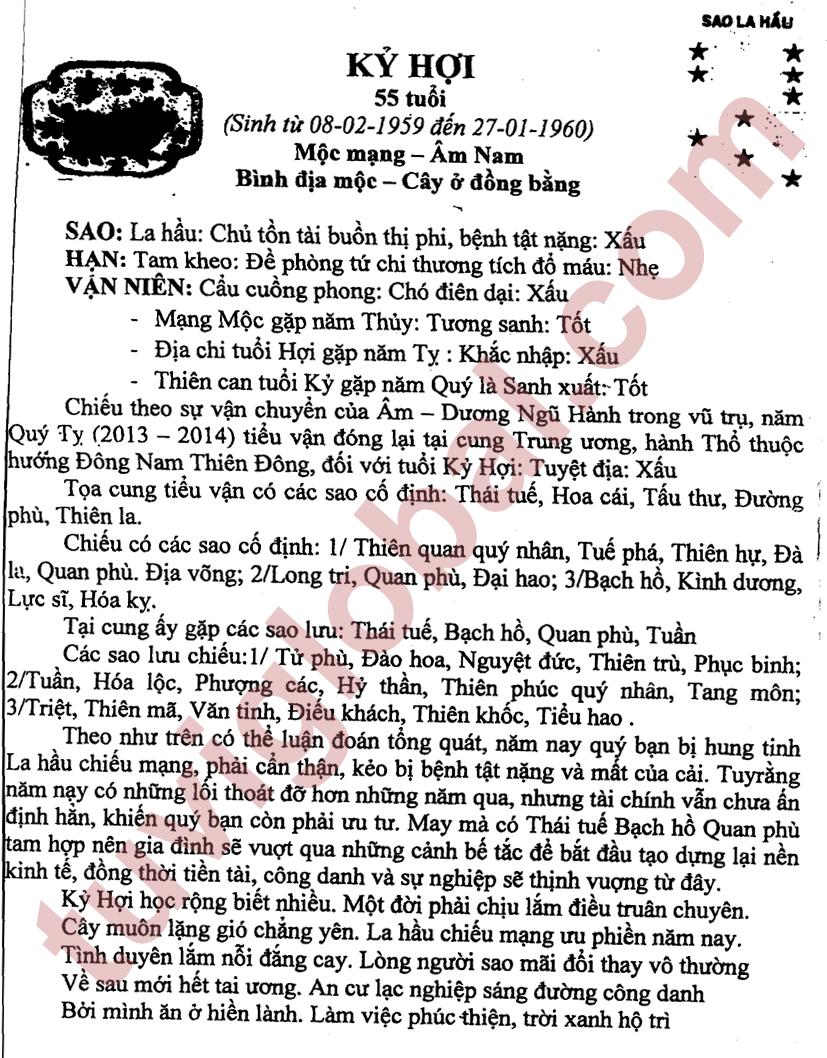 TỬ VI TUỔI KỶ HỢI 1959 NĂM 2013 (QUÝ TỴ)