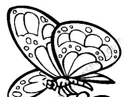 Printable Butterflies Coloring Pages For Kids