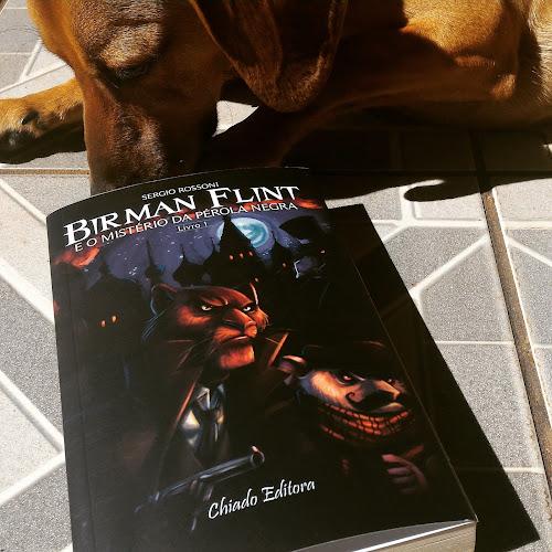 Birman Flint e o Mistério da Pérola Negra - Sérgio Rossoni