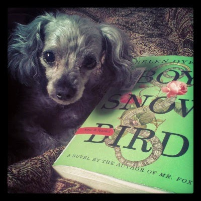 Murchie lays beside a paperback copy of Boy, Snow, Bird by Helen Oyeyemi.