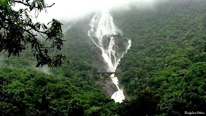 Glimpse of Might Dudhsagar Water Falls from view point