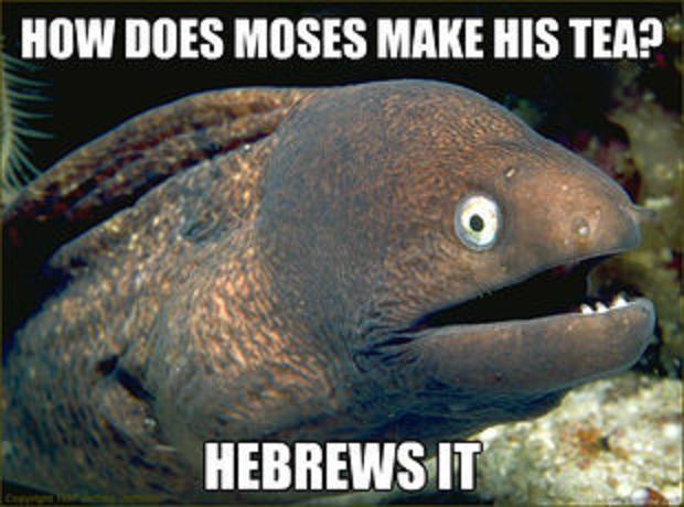 Bad Joke Eel Meme Moses  Hebrews