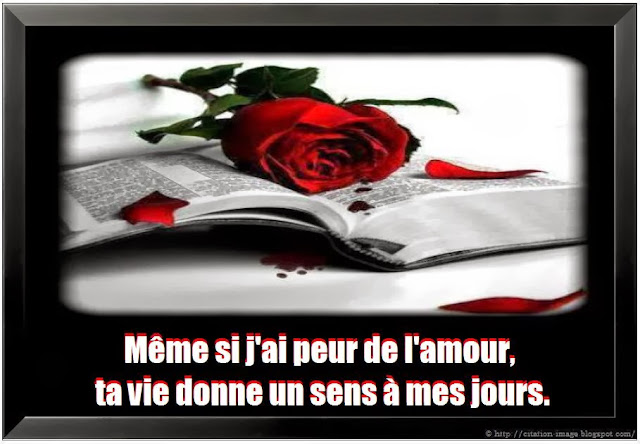 Citation d'amour caché en image