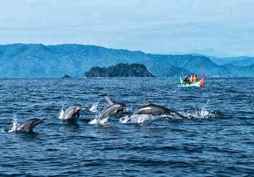 Pantai Teluk Kiluan Lampung