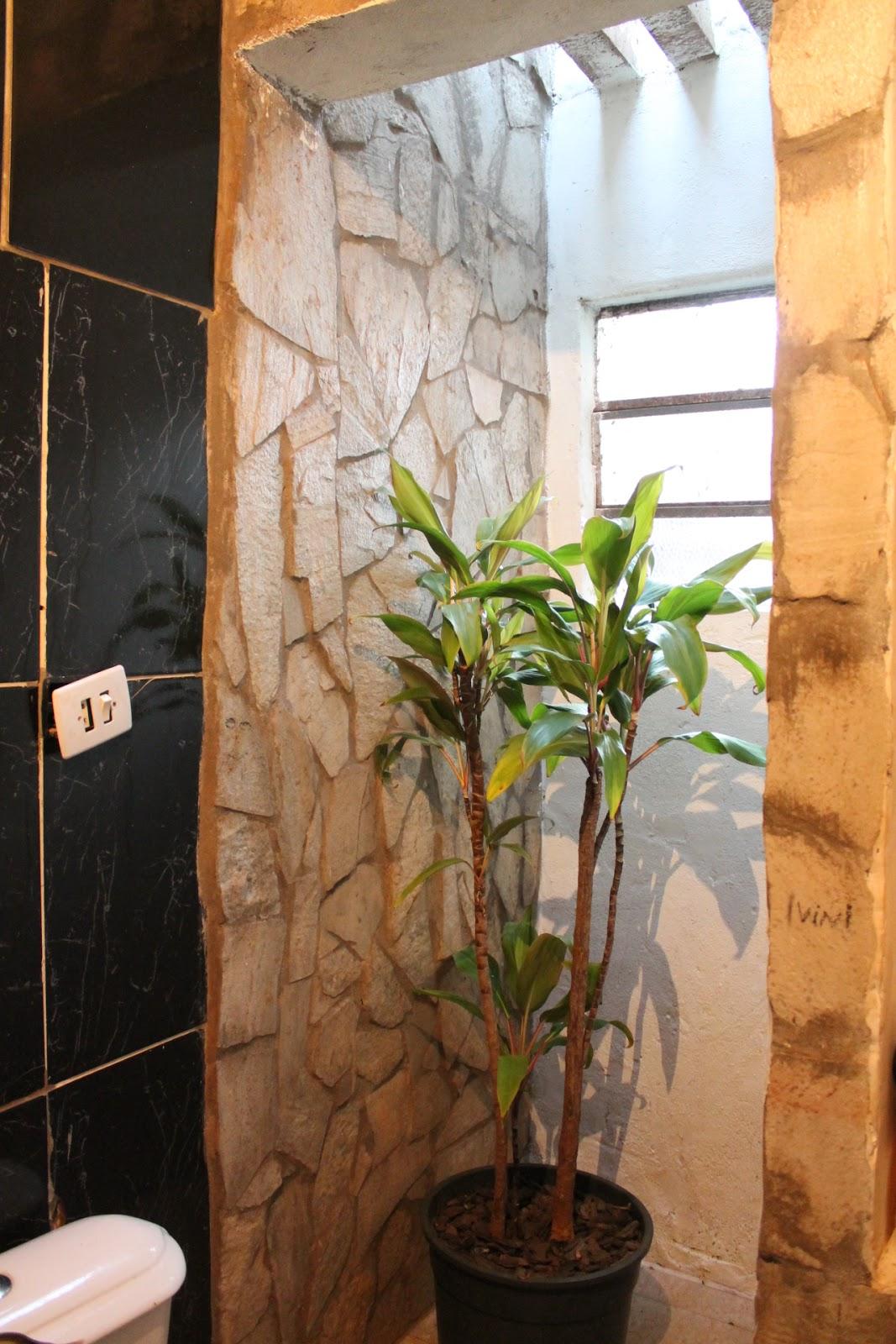 para a janelinha abaixo do micro jardim de inverno do banheiro  #A66D25 1067 1600