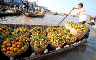Majestic Mekong Delta Tour from Saigon to Siem Reap  2