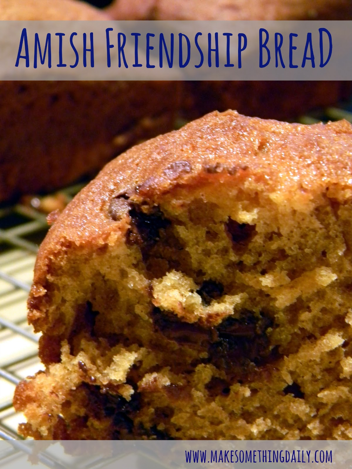 Amish Friendship Bread Original Recipe | Make Something Daily