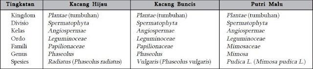 Klasifikasi Beberapa Tumbuhan