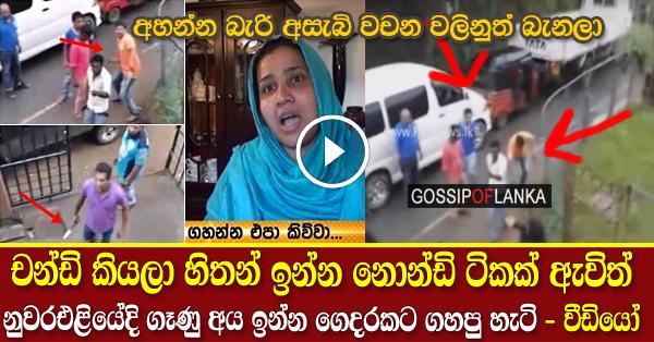 Fight In Nuwaraeliya - (Watch Video)