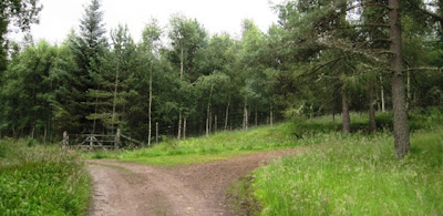 Junction on the walking path near Ballater