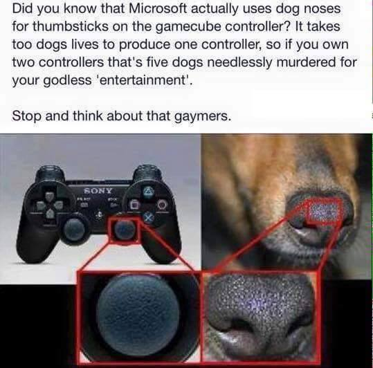 #gaymers #Microsoft #dog #gamecube #controller #entertainment #noses #game Did you know that Microsoft actually uses dog noses for thumbsticks on the gamecube controller? It takes too dogs lives to produce one controller
