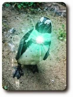 Acerca de Linux ALL