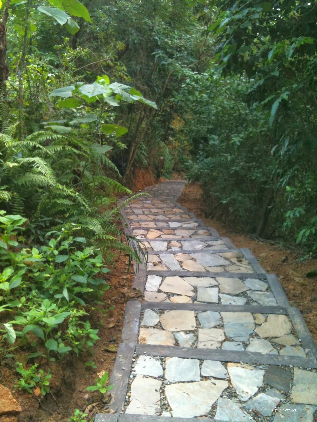 自強隧道上自然步道的坡度頗大的斜坡也改成石階了,改善了下雨天容易滑倒的問題。
