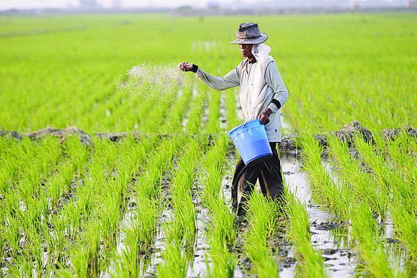 Tagline Pertanian : Pertanian Sebagai Sumber Daya Hayati ...