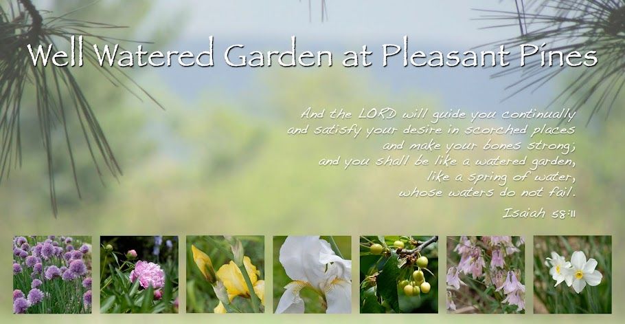 Well Watered Garden At Pleasant Pines