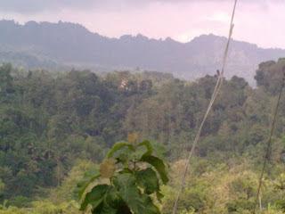 Tempat Paling Angker Yogyakarta