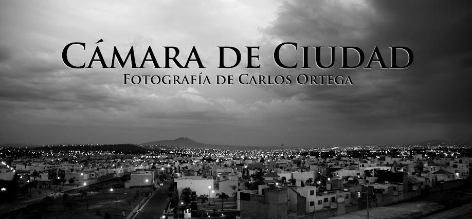 Cámara de Ciudad