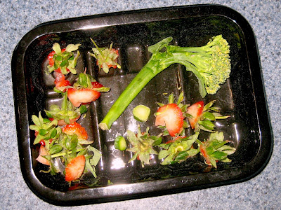 Dead strawberries and broccoli