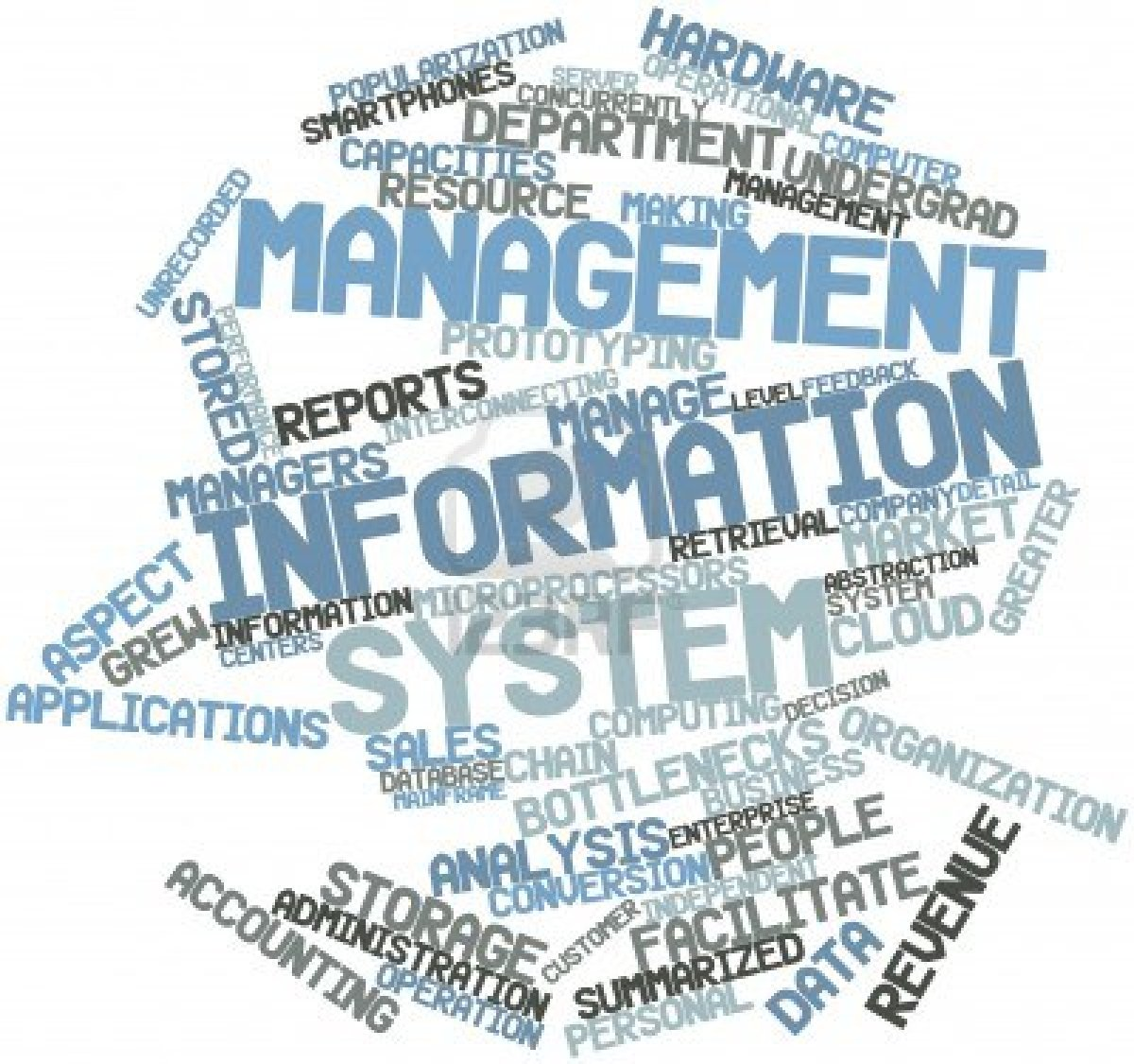 manage information systems Management information systems major courses — learn to use technology in support of organizational goals, such as information security, project management, and business data business core courses — develop your business expertise with a foundation in financial accounting, economics, business law, and statistics.