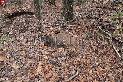 свежие следы черных копателей