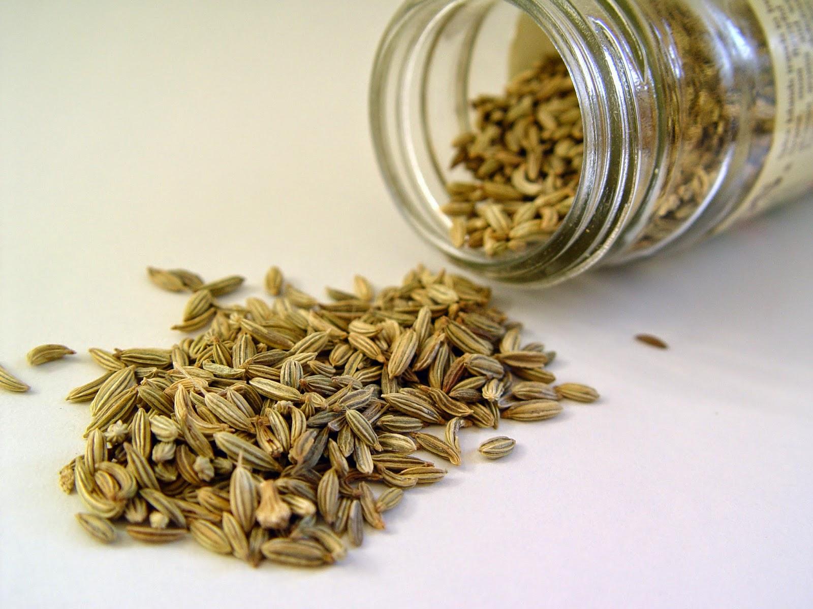 herba -herba yang memabantu masalah sembelit dan penghadaman