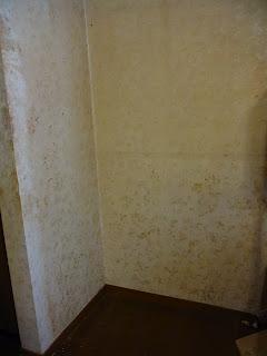 汚部屋・ゴミ屋敷画像 壁の汚れビフォー&アフター ビフォー画像