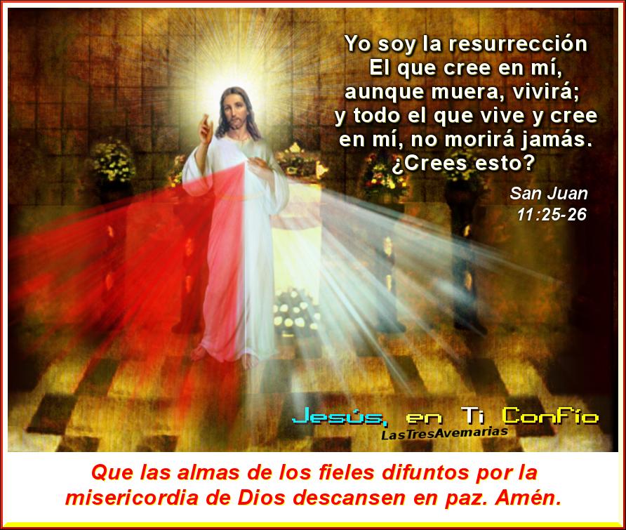 imagen de la divina misericordia yo soy l resureccion y la vida