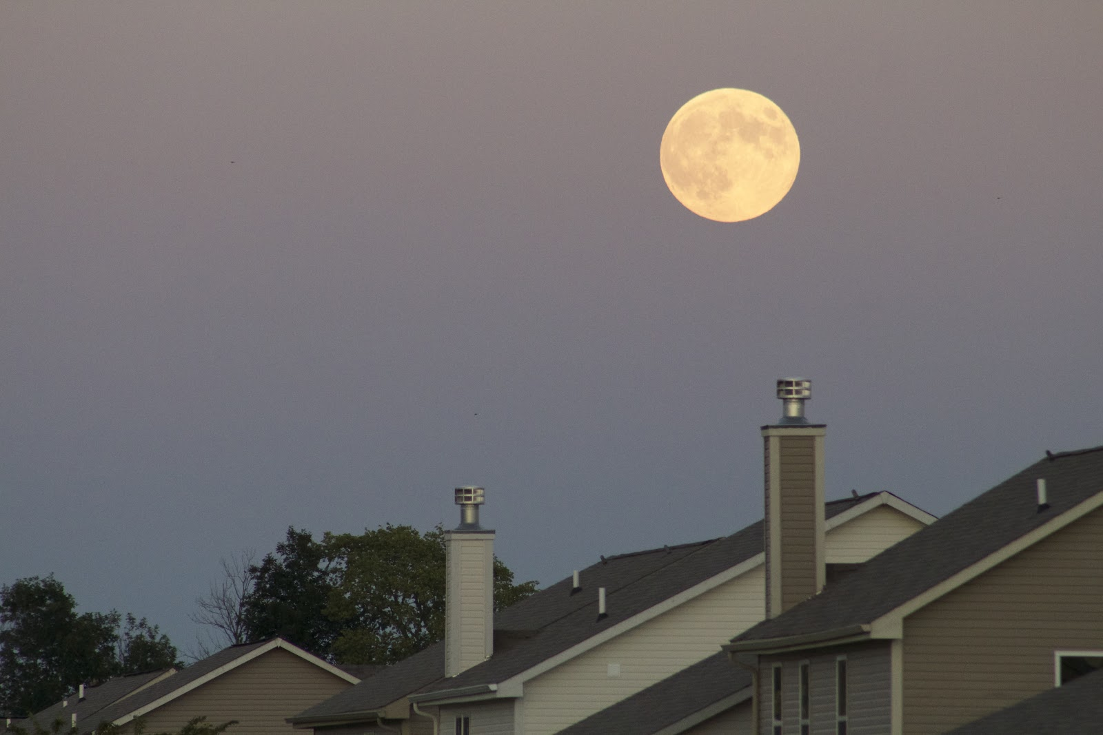 supermoon sept 8 2014