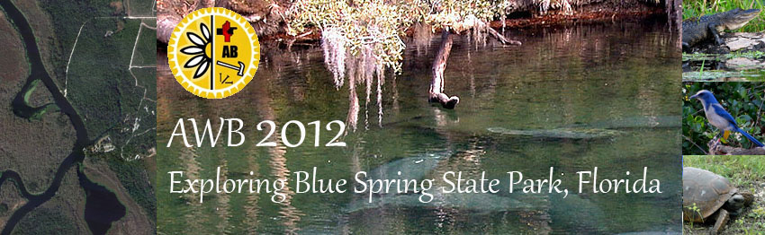 AWB 2012- Exploring Blue Spring State Park, Florida