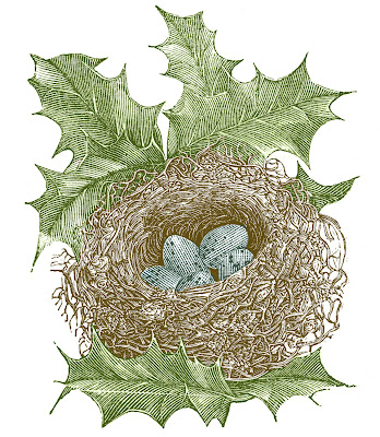 Vintage Images - Nest with Eggs and Holly