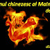 2016 - Anul chinezesc al Maimuţei de Foc | Previziuni horoscop 2016