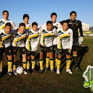 7ma Division AFA Aldosivi 2012