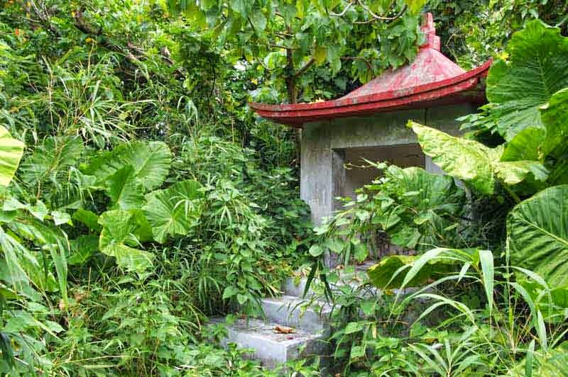shrine, jungle