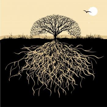 Gallery Funny Game Celtic Tree Of Life Meaning