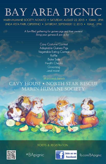 Bay Area Pignic 2015 Guinea Pig Rescue Fundraiser